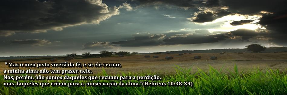 Não é verdade que um crente não pode perder a salvação